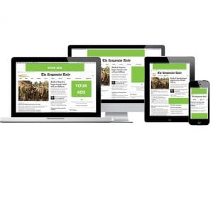Display Advertising- Green Banners 3
